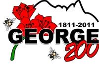 george200-200