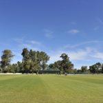Big cricket event in Oudtshoorn