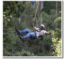 Tsitsikamma Canopy Tours Youtube
